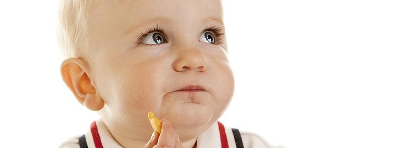 Ek Gıdaya Geçişte Atıştırma Çantasının Faydaları Nelerdir?